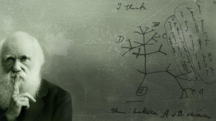 Дарвин и его работа.
